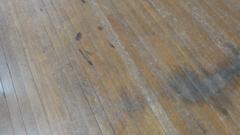 f:id:paffue:20110210110328j:image
