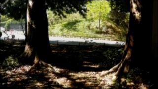 f:id:paffue:20110521220151j:image