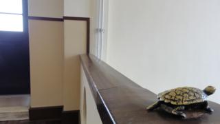 f:id:paffue:20110530182338j:image