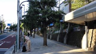 f:id:paffue:20120901175946j:image