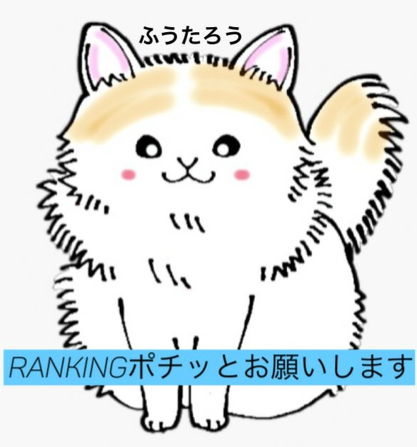 f:id:pafutaro:20191222083455j:plain