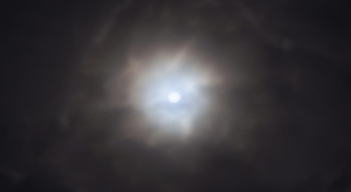 f:id:pagliuca-yuma1205:20200113212826j:plain