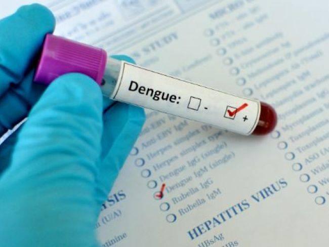 デング熱血液検査