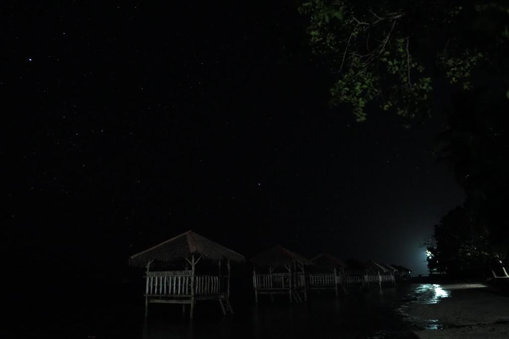f:id:palawan:20181104201522j:plain