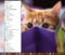 Windows10-1803_StartMenuModoki