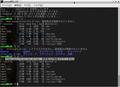 KLUE[Ubuntu1804]-xrdp-error-01