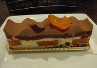アプリコットとチョコレートのケーキ