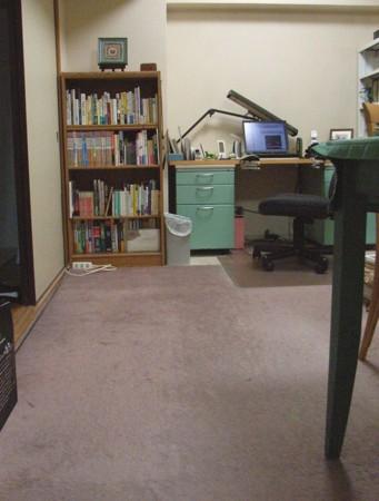 f:id:paluko:20101101013349j:image:w200:right