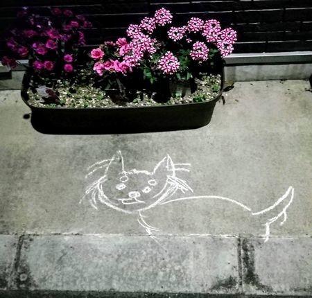 路上のネコの落書き
