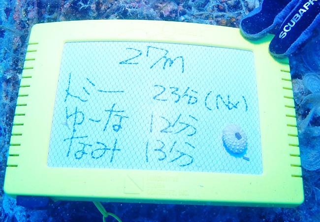 f:id:palwave_okinawa:20170705095658j:plain