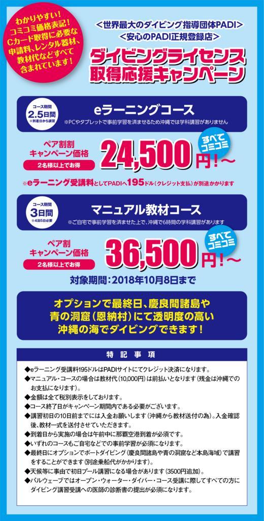 f:id:palwave_okinawa:20180703101719j:plain
