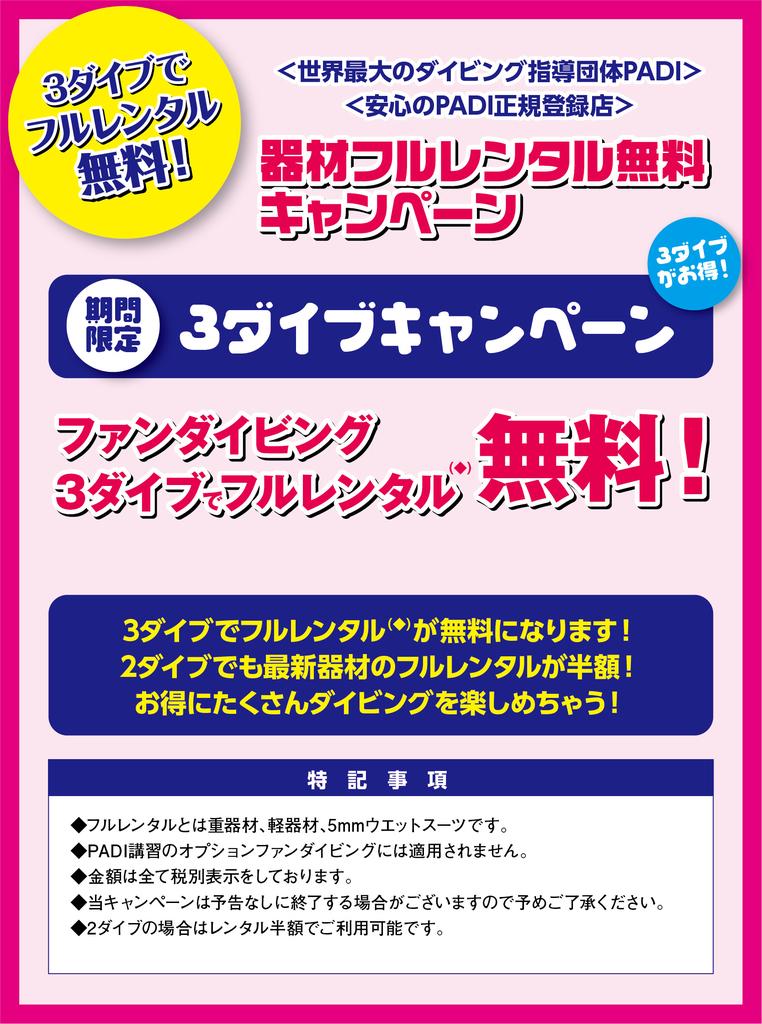 f:id:palwave_okinawa:20190107101913j:plain