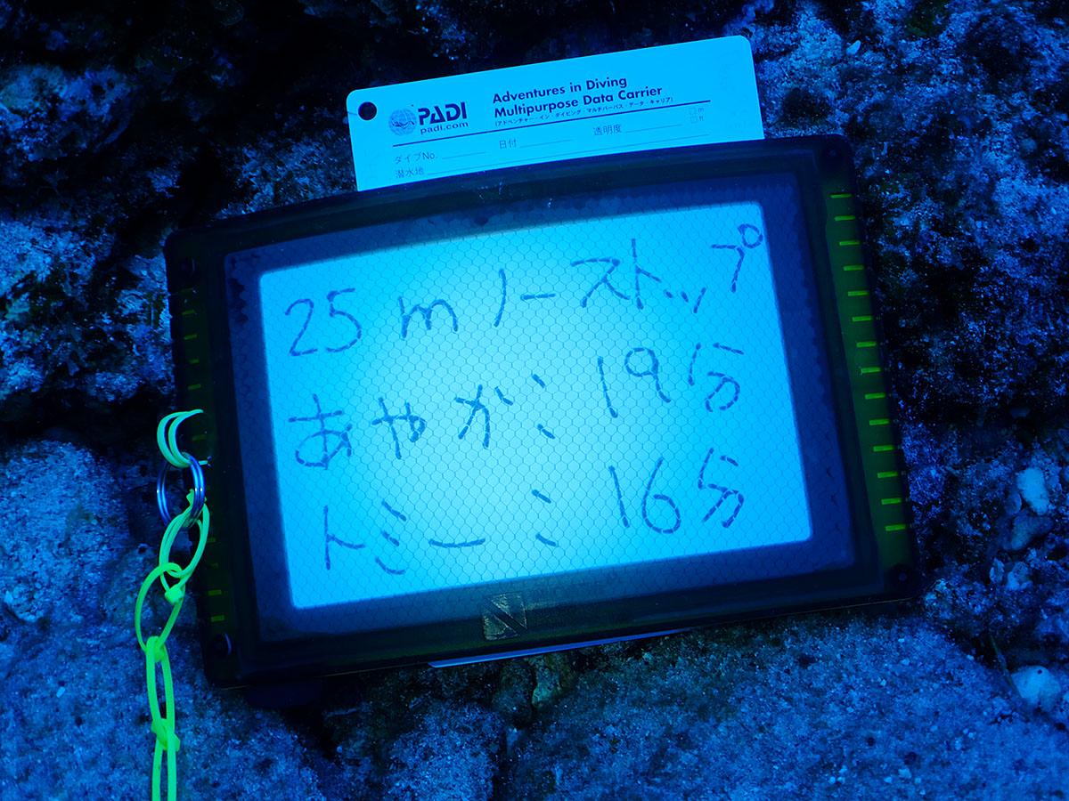 f:id:palwave_okinawa:20190821162846j:plain