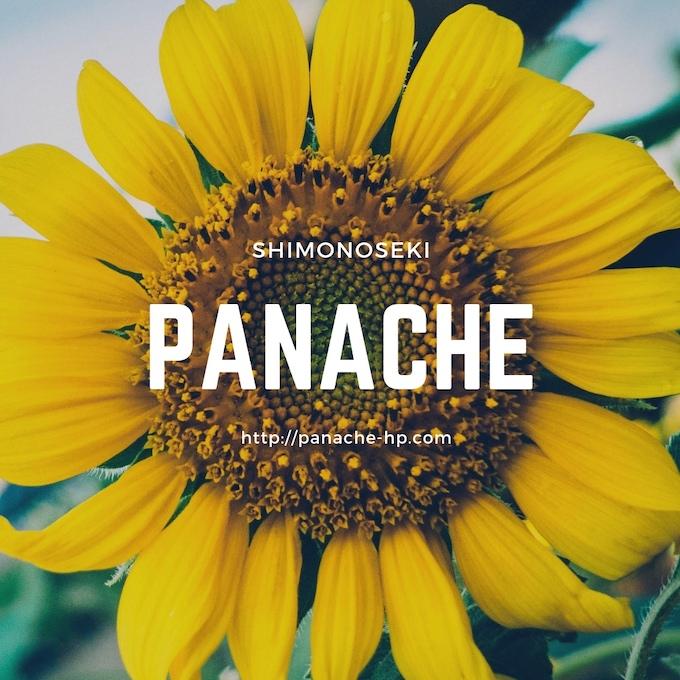 f:id:panache441:20190328181325j:plain