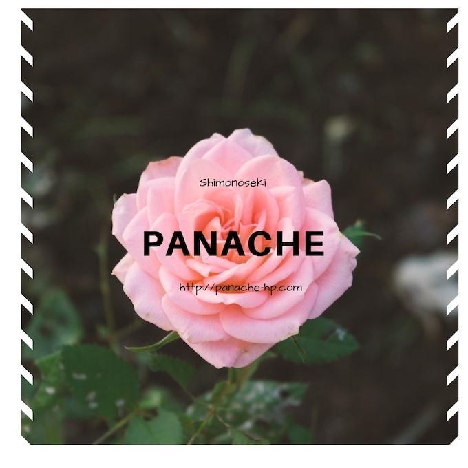 f:id:panache441:20190328182031j:plain