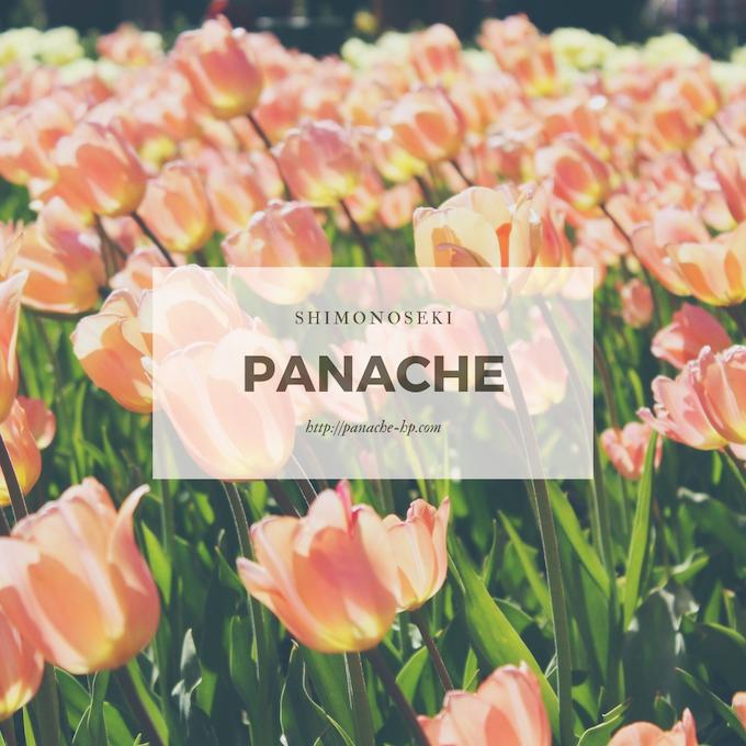 f:id:panache441:20190328182116j:plain