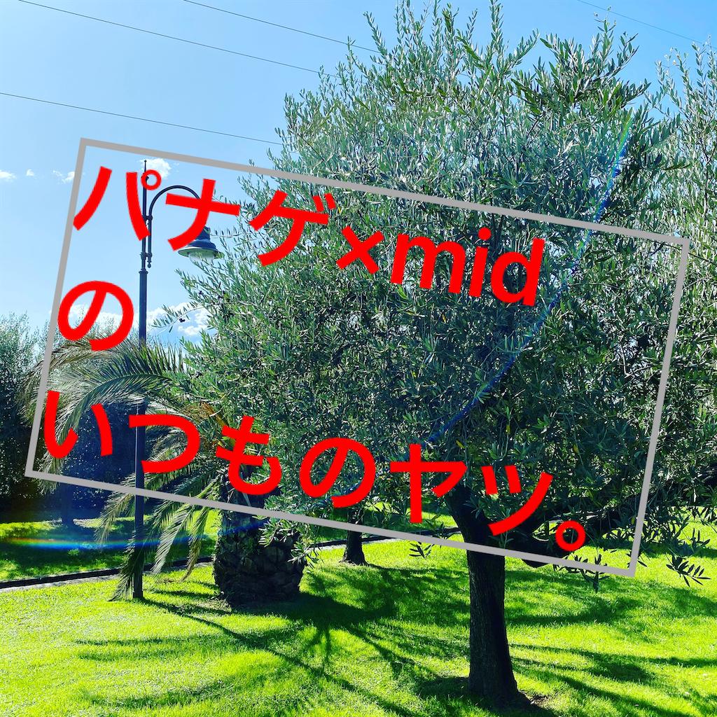 f:id:panage-mid:20201011213018p:image