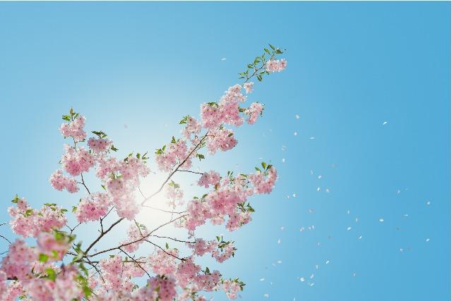 節分、立春、新月