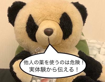 f:id:pandafullife:20191217035752j:plain