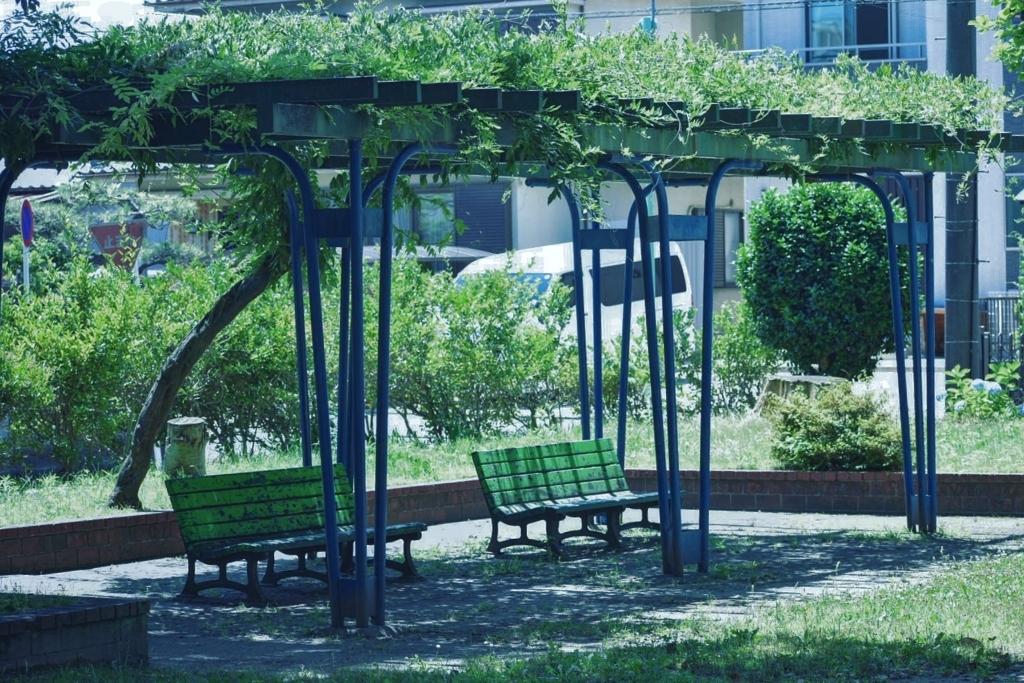 休日の公園のベンチ