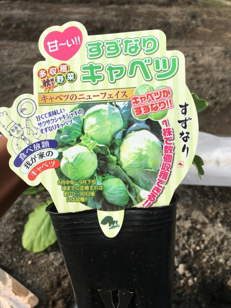 f:id:panyaki0917:20170913212808j:plain
