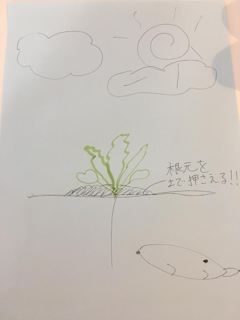 f:id:panyaki0917:20170925093623j:plain
