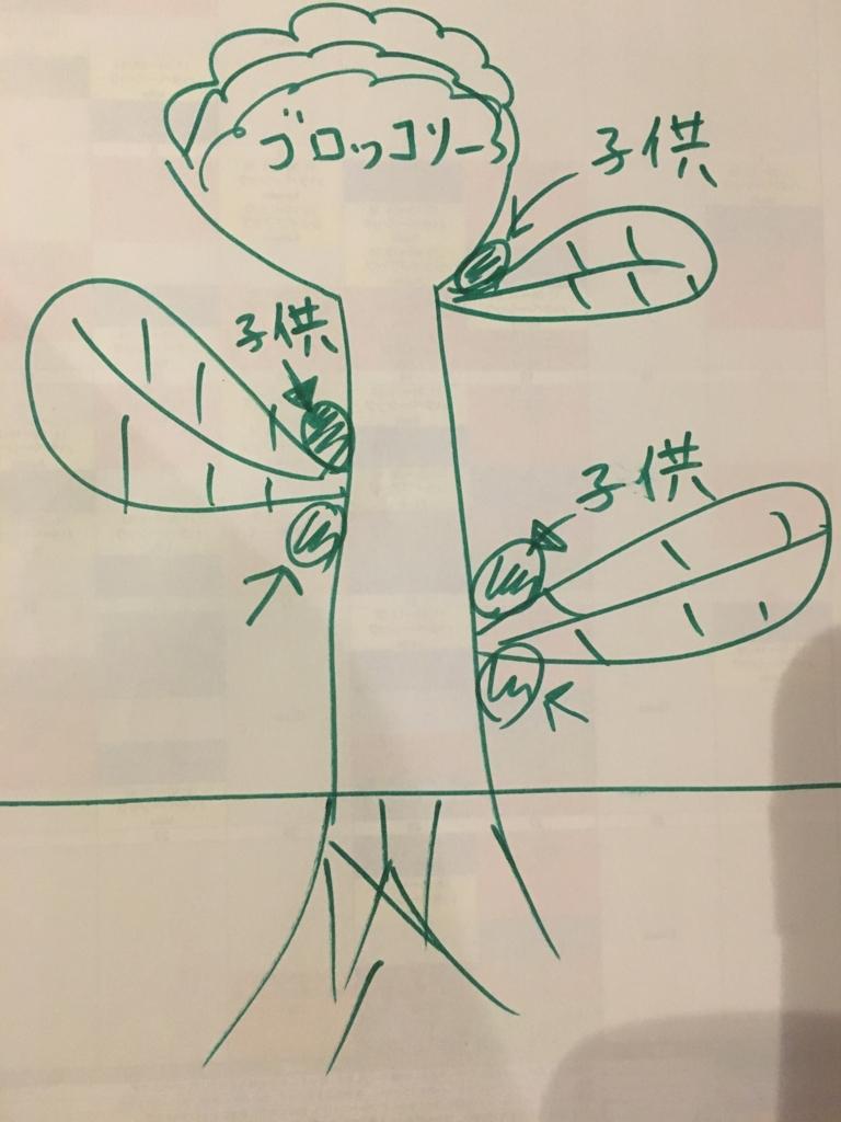 f:id:panyaki0917:20171114205757j:plain