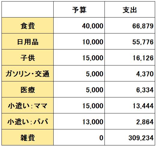 2016年10月度(10/20~11/19)の支出(変動費)