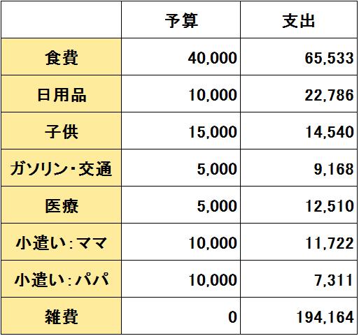 2017年1月度(1/20~2/19)の支出(変動費)