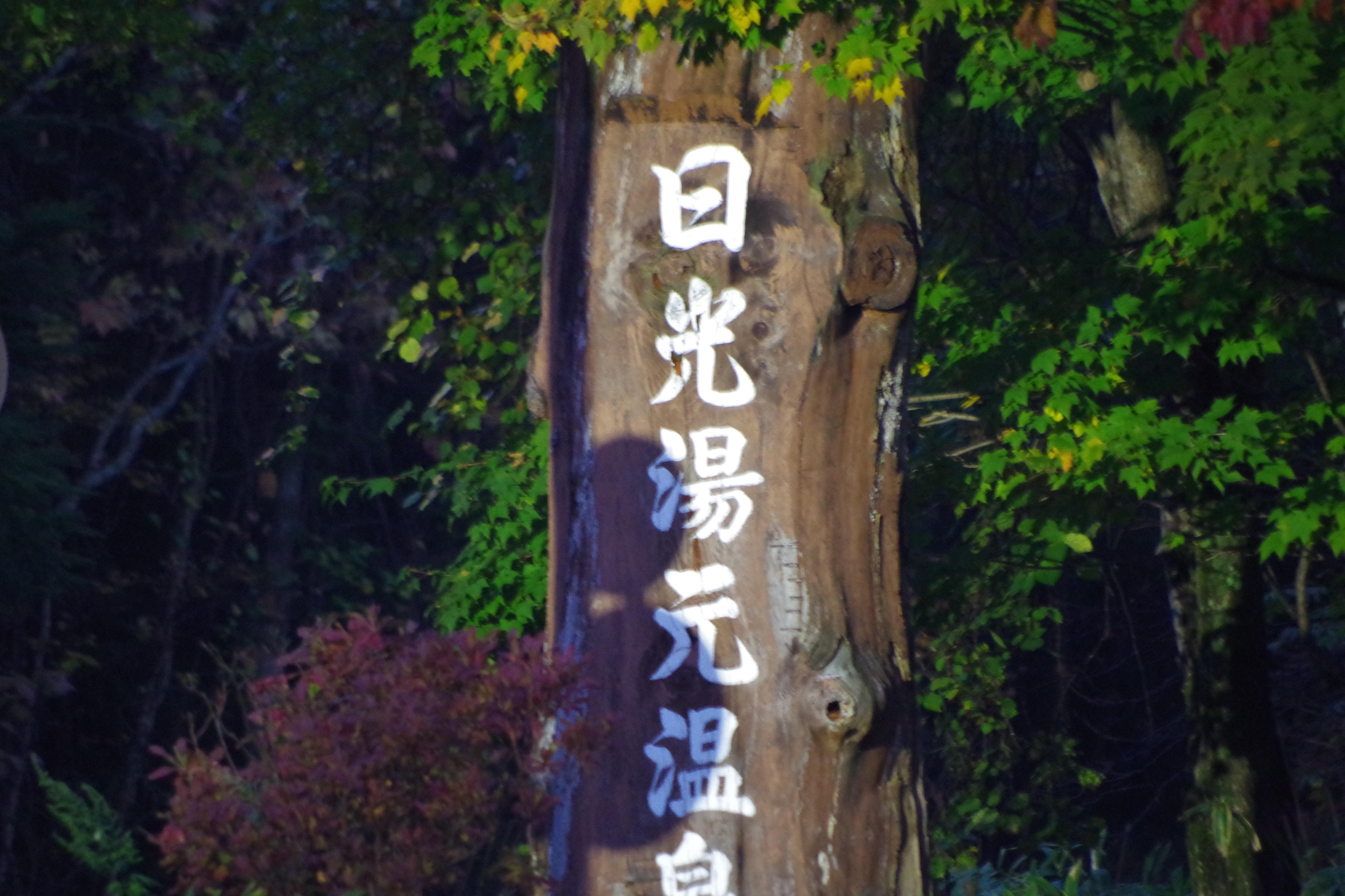 f:id:papayumiki:20161019111840j:image