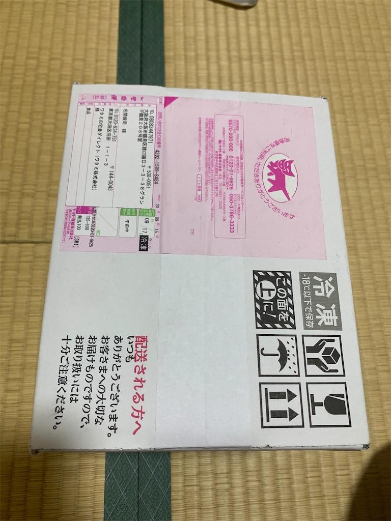 f:id:paperplain:20201003190925j:plain