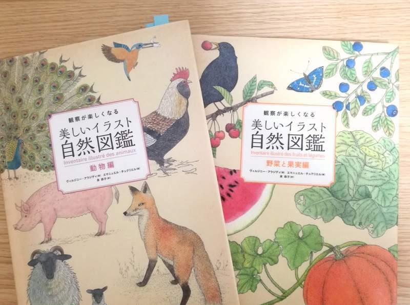『観察が楽しくなる美しい自然イラスト図鑑』
