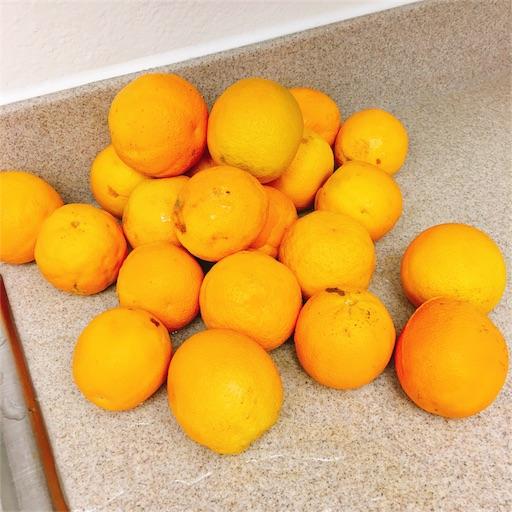 マーマレード 作り方 オレンジ