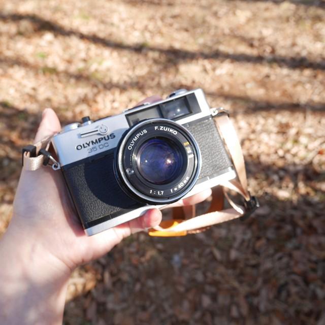 f:id:papiocamera:20200209162806j:plain