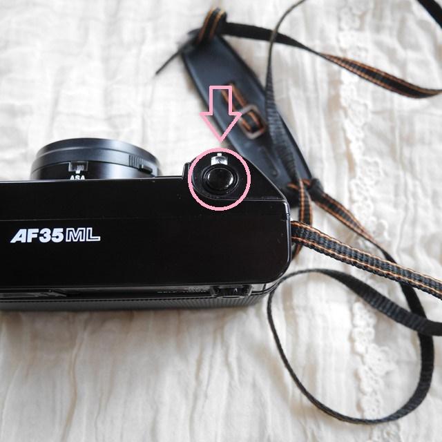 f:id:papiocamera:20200216094043j:plain