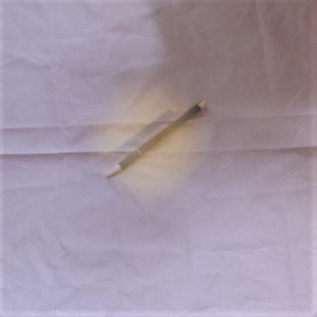 f:id:papiocamera:20200527153603j:plain