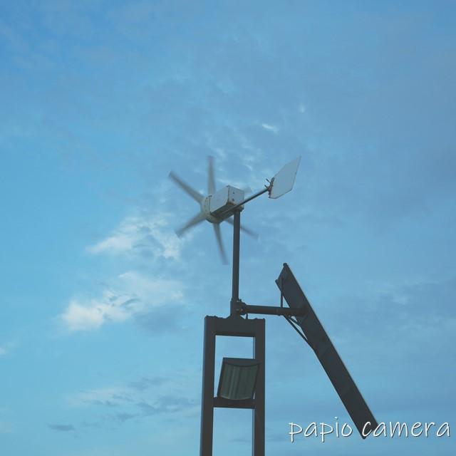 f:id:papiocamera:20200620110230j:plain