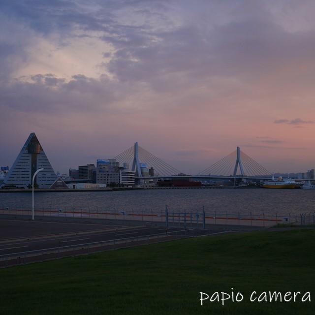 f:id:papiocamera:20200620110351j:plain