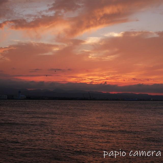 f:id:papiocamera:20200620110517j:plain