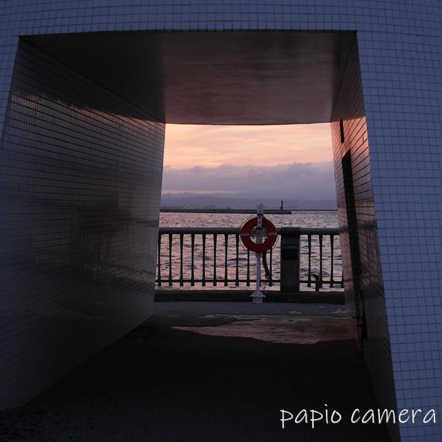 f:id:papiocamera:20200620110601j:plain
