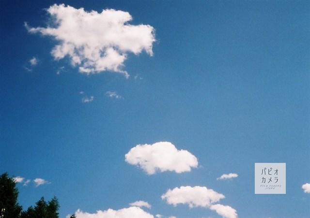 f:id:papiocamera:20200621153510j:plain