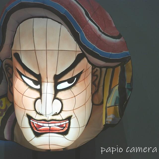 f:id:papiocamera:20200625104046j:plain