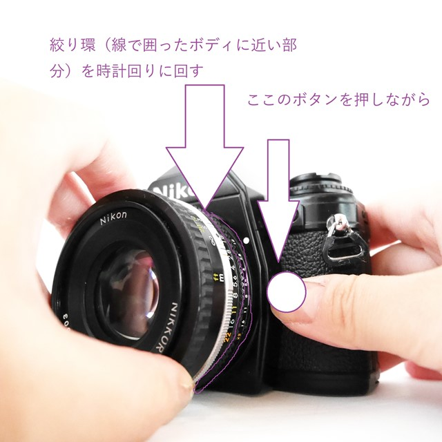 f:id:papiocamera:20200910165643j:plain