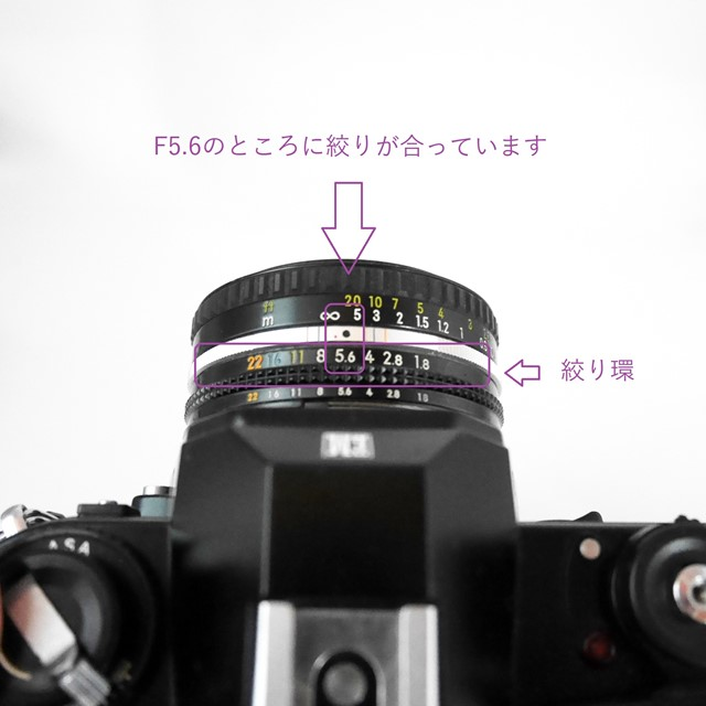 f:id:papiocamera:20200910170146j:plain