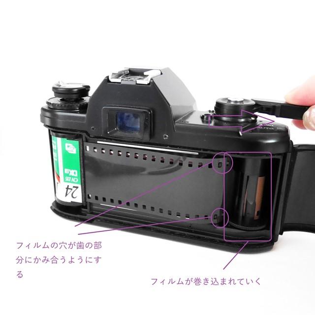 f:id:papiocamera:20200913135450j:plain