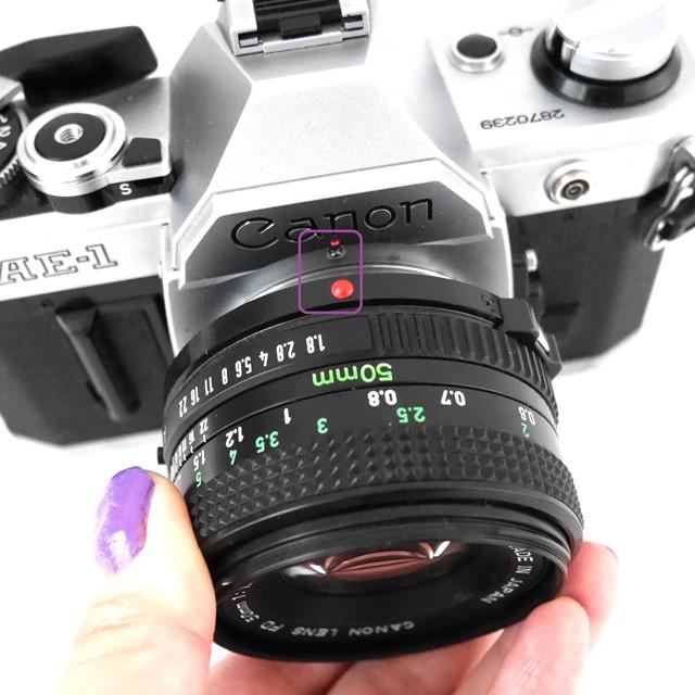 f:id:papiocamera:20200919122825j:plain