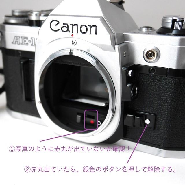 f:id:papiocamera:20200919130139j:plain