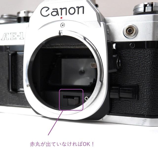 f:id:papiocamera:20200919130228j:plain