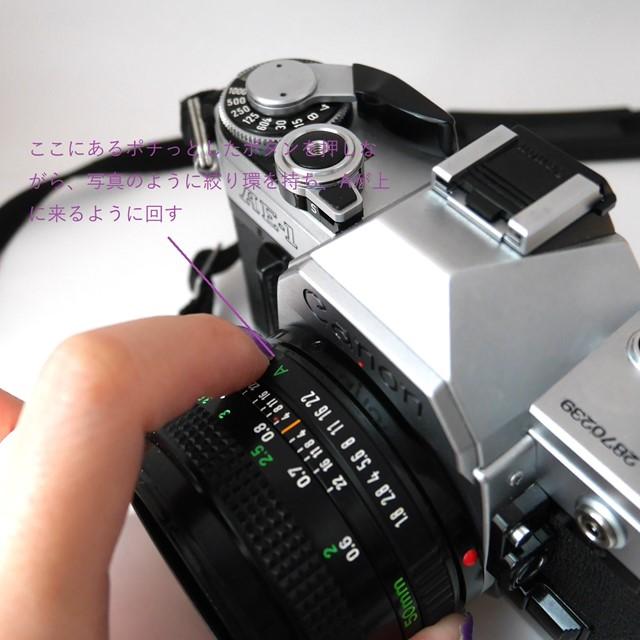 f:id:papiocamera:20200919130335j:plain