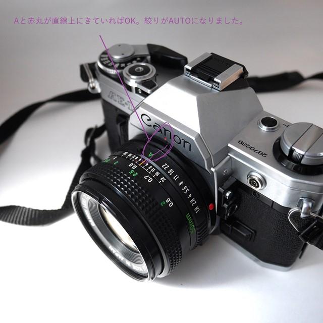 f:id:papiocamera:20200919130425j:plain